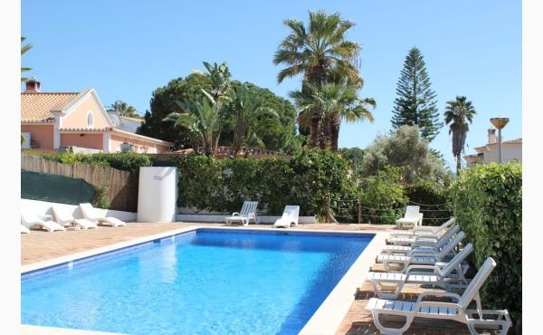 Gemeinschaftspool mit Sonnenliegen / Community pool with sunbeds