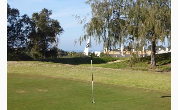 Golfarea